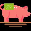 Pig512